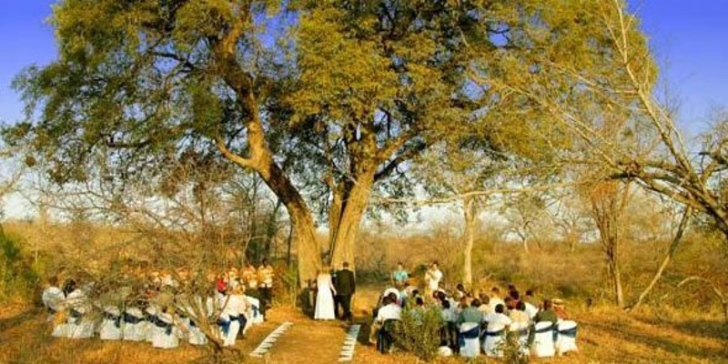 bushveld wedding