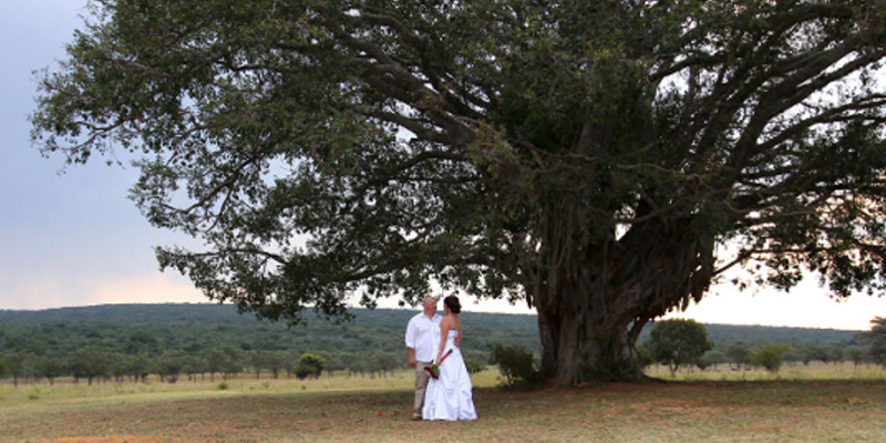 bushveld wedding2