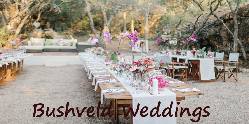 bushveld wedding6